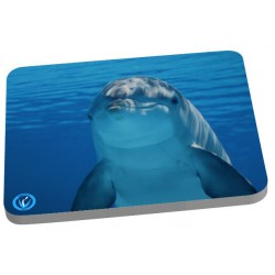 Tapis de sourie dauphin