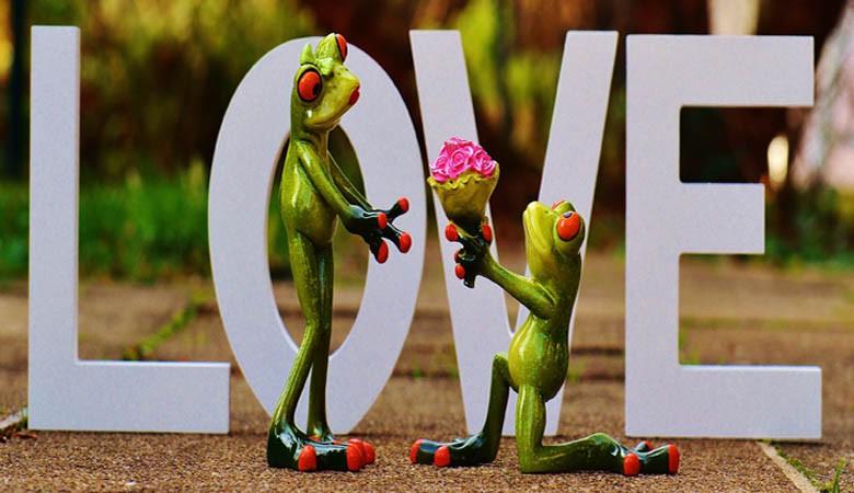 Bonne fête les amoureux
